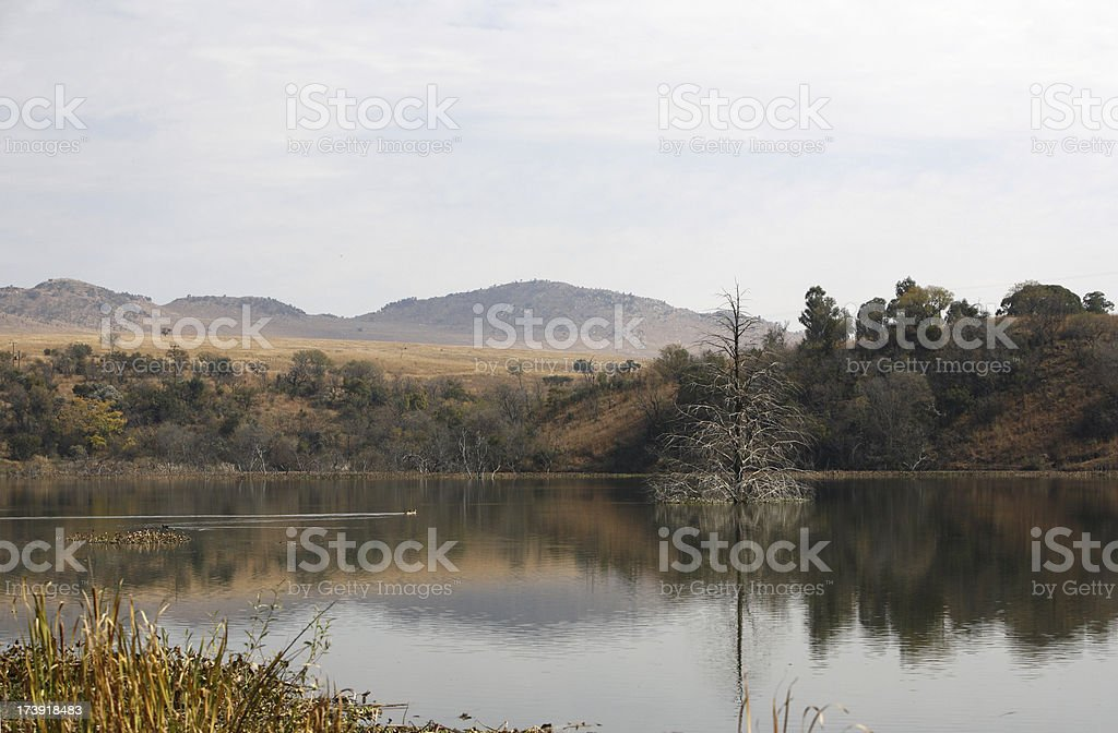 Tranquil lake Johannesburg South Africa royalty-free stock photo