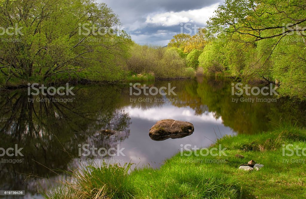 Tranquil lake scape with beautiful reflection and green forest background stock photo