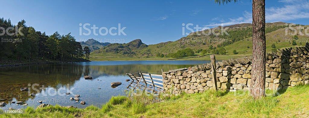 Tranquil lake shore summer mountain vista stock photo