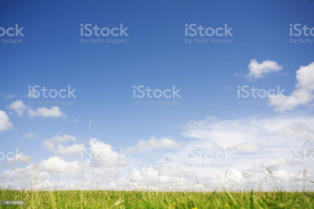 Tranquil landscape royalty-free stock photo