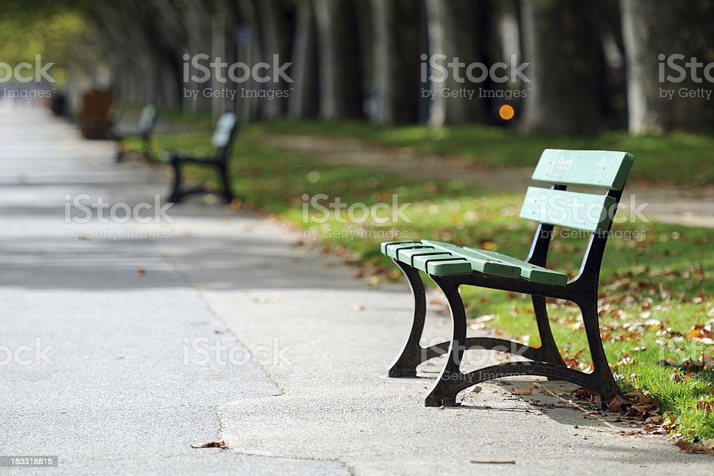 Tranquil Park Bench - XLarge royalty-free stock photo
