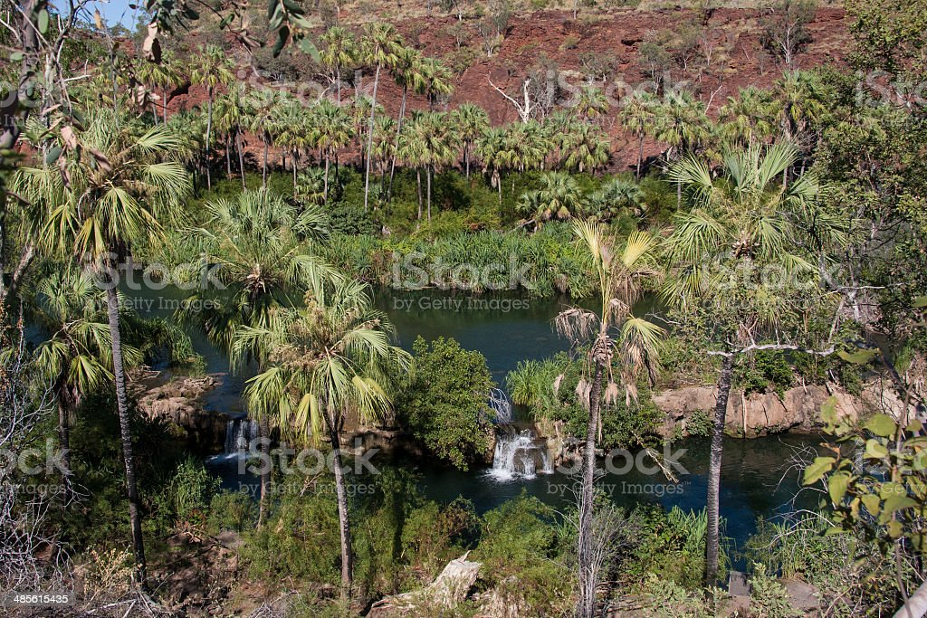 Tranquil Pool, Lawn Hill Gorge stock photo
