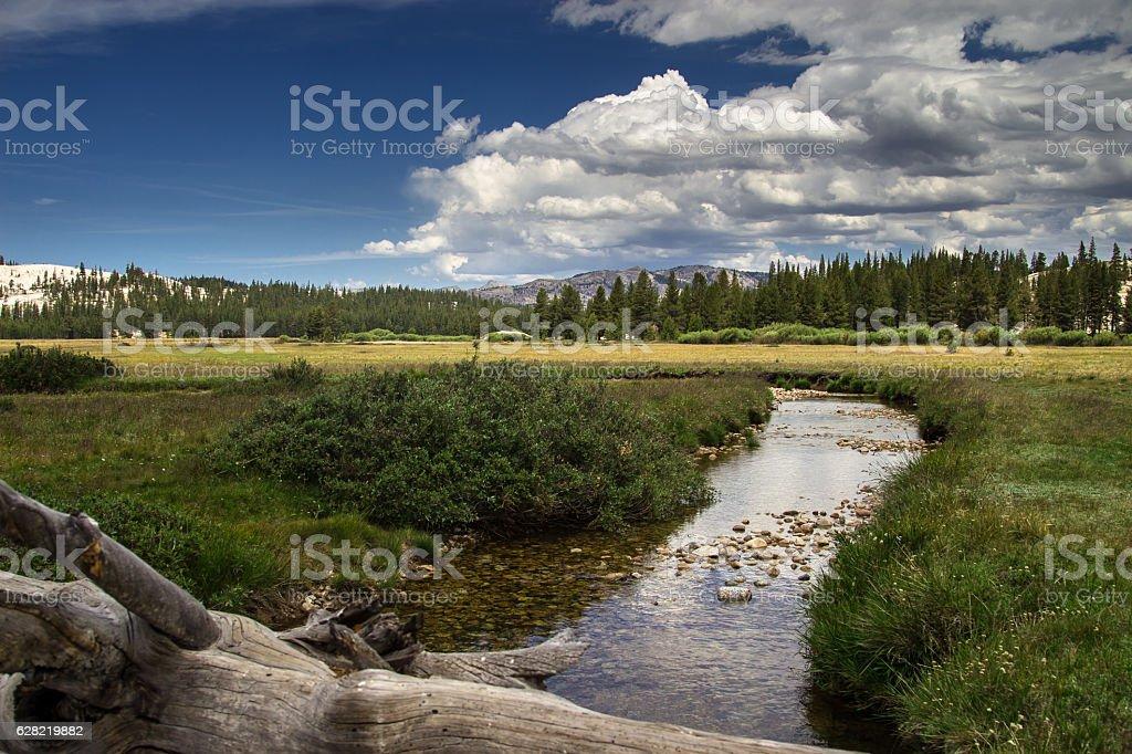 Tranquil Scene in Tuolumne Meadows stock photo
