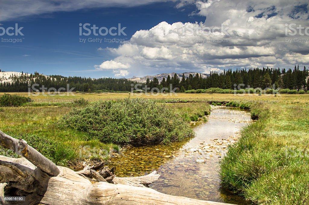 Tranquil Scene in Tuolumne Meadows, Yosemite National Park stock photo