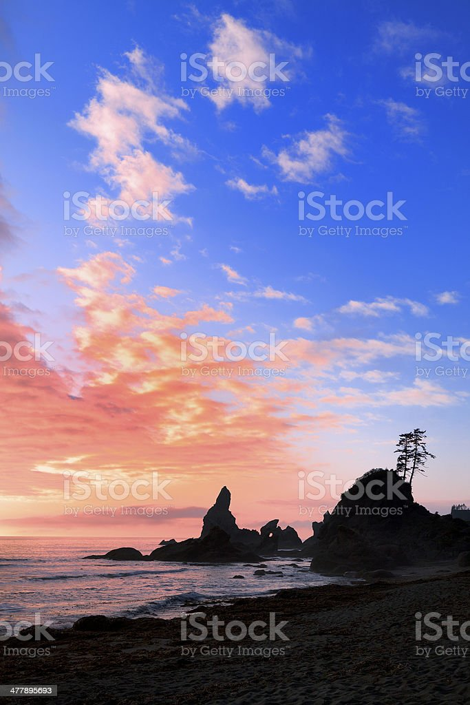 Tranquil Shores stock photo