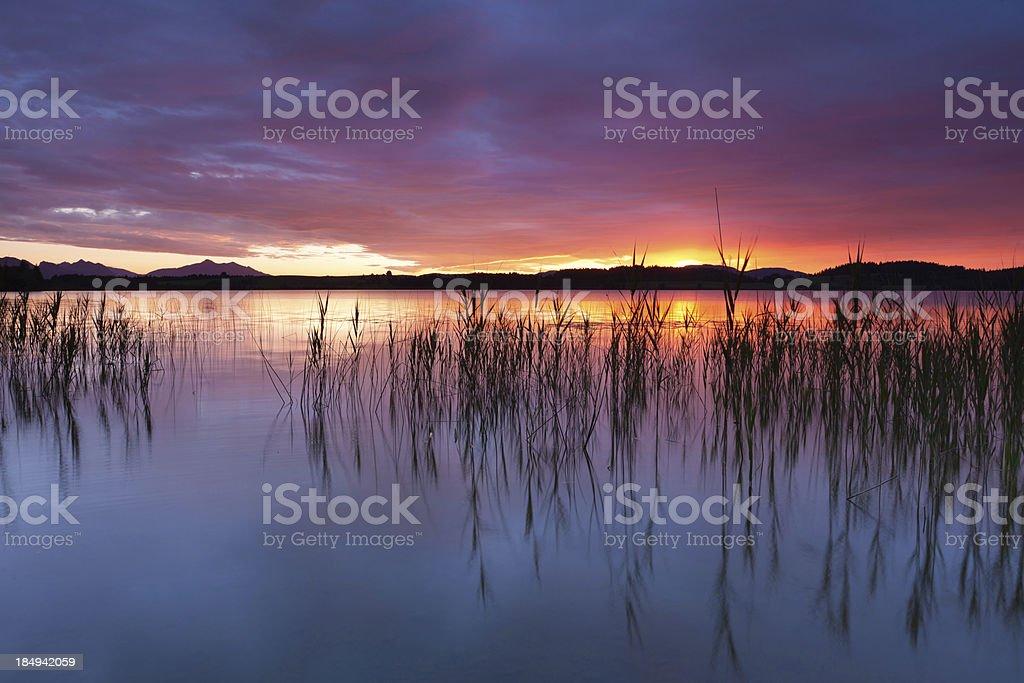 'tranquil sunset at lake bannwaldsee, bavaria - germany' stock photo