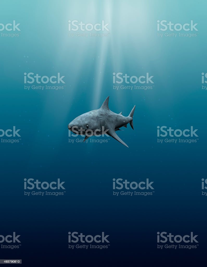 tranquil underwater view with great white shark stock photo
