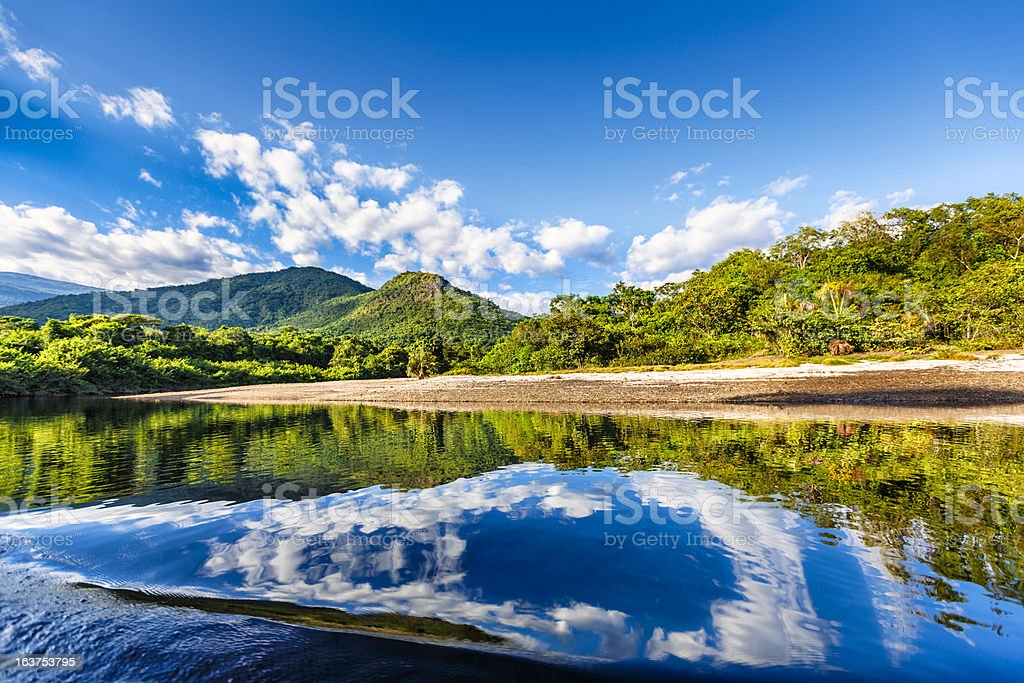 Tranquil waters on a river in the Amazon state Venezuela royalty-free stock photo