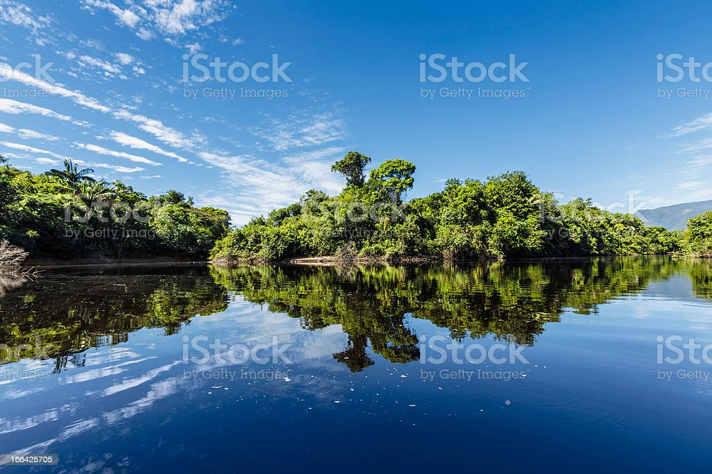 Tranquil waters on a river in the Amazon state Venezuela stock photo