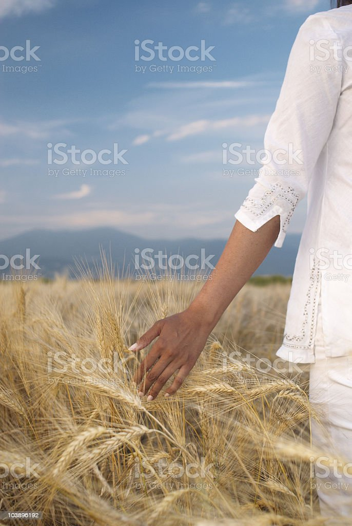 Tranquil woman standing in remote field of ripening wheat royalty-free stock photo