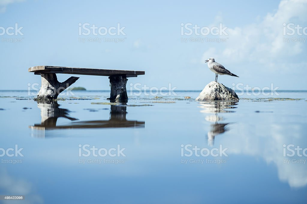 Tranquility in Florida Keys stock photo