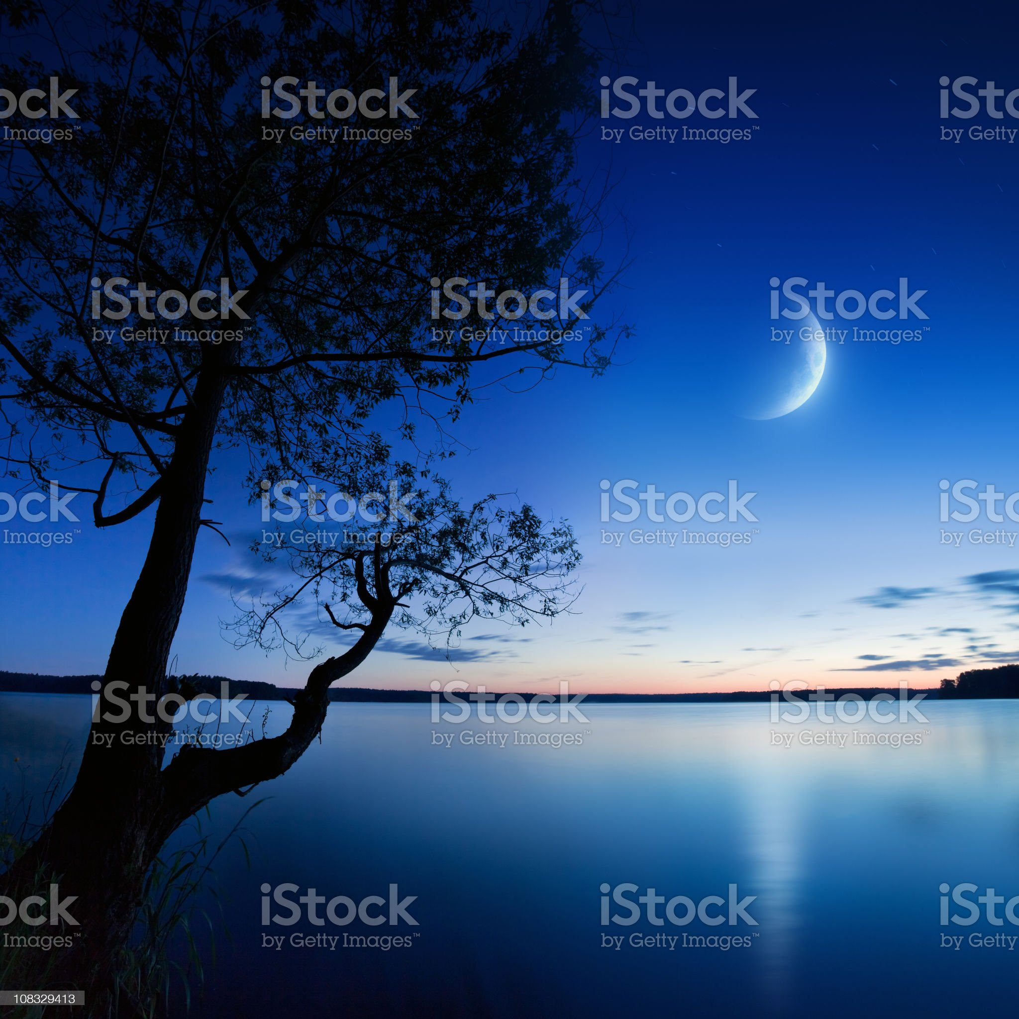 Tranquility royalty-free stock photo