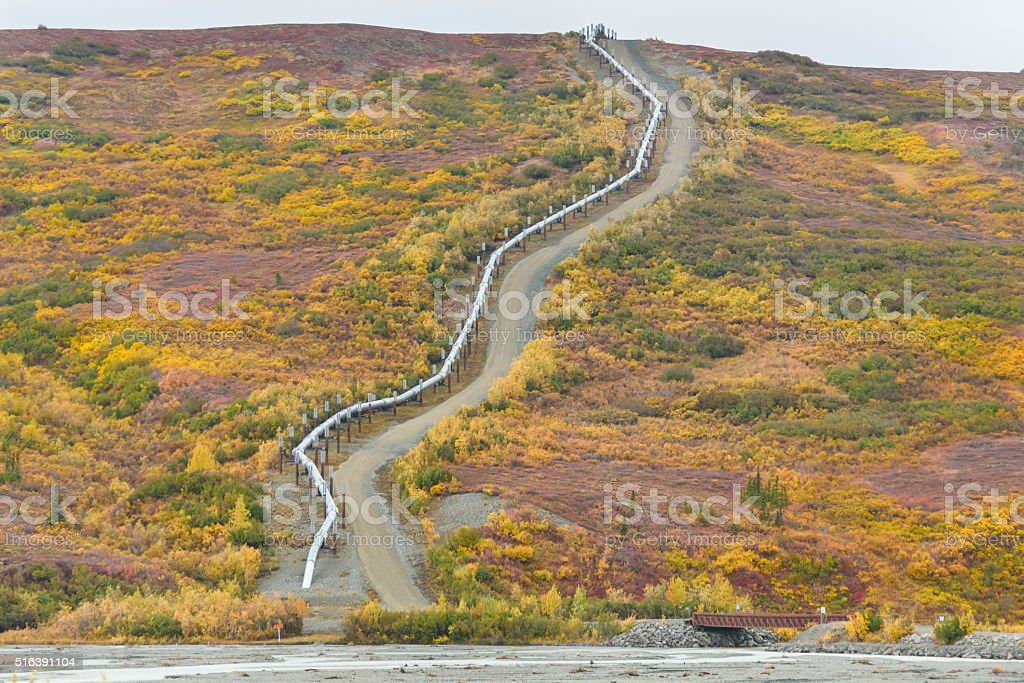 Trans Alaska Pipeline Climbing Hil in Autumn Colors stock photo