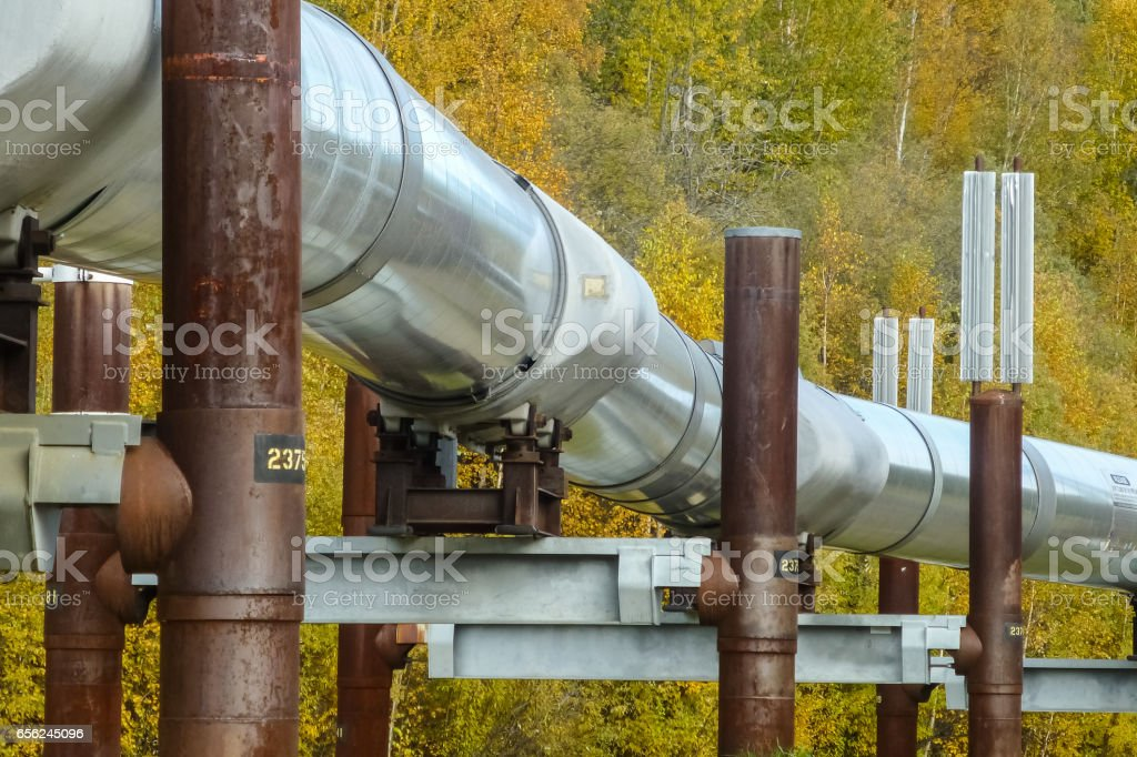 Trans Alaska Pipeline in fall stock photo