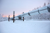 Trans Alaska Pipeline in Winter with Sunset