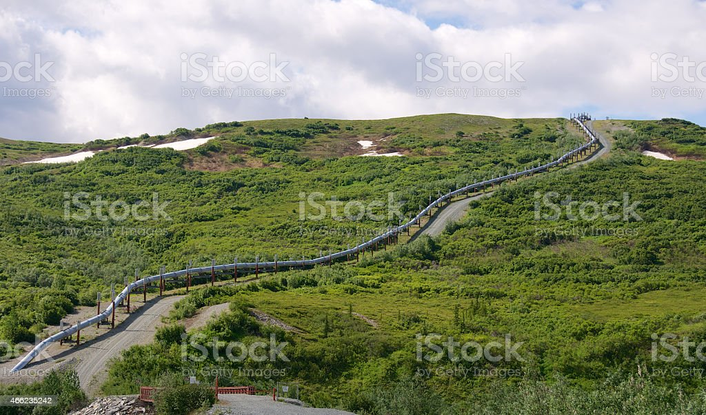 Trans Alaska Pipleline Ascending Hill in Spring stock photo