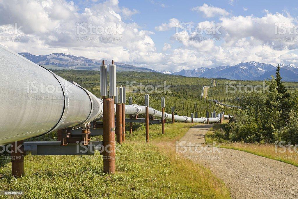 Trans Alaskan Oil Pipeline, Alaska royalty-free stock photo