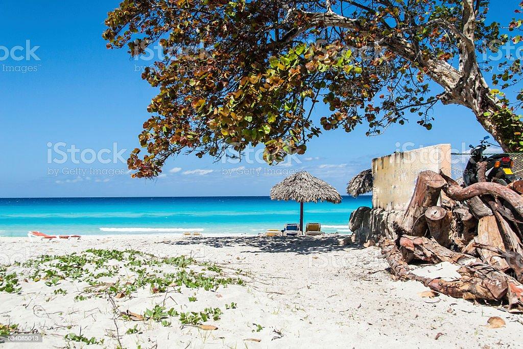 Transats and palapa on Varadero beach Cuba stock photo