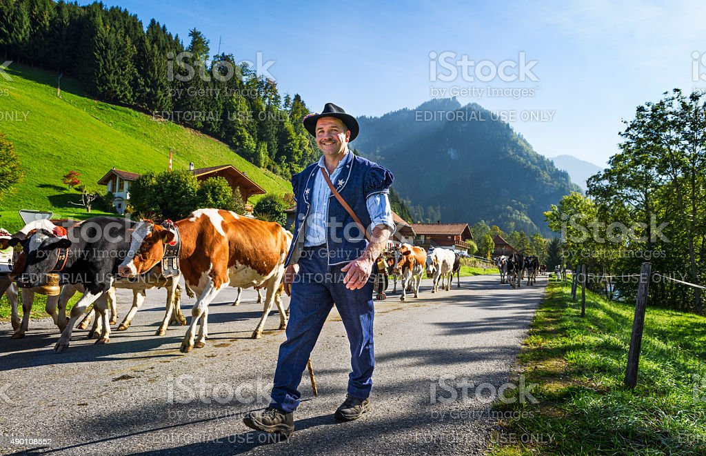 transhumance event in Charmey stock photo