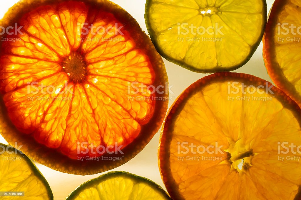 Translucent Citrus Fruit Slices stock photo