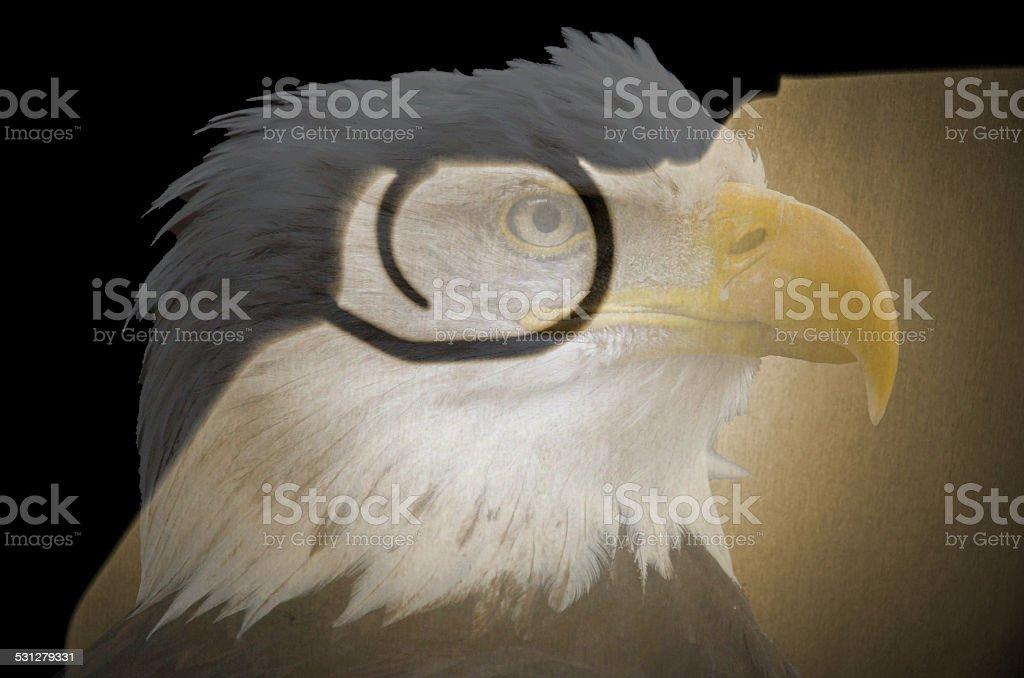 Transparent Bald Eagle Image Over Pistol Trigger stock photo