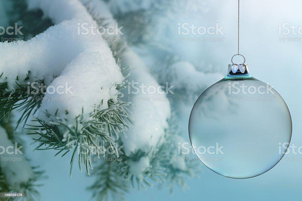 Transparent Christmas ball on a snowy fir stock photo