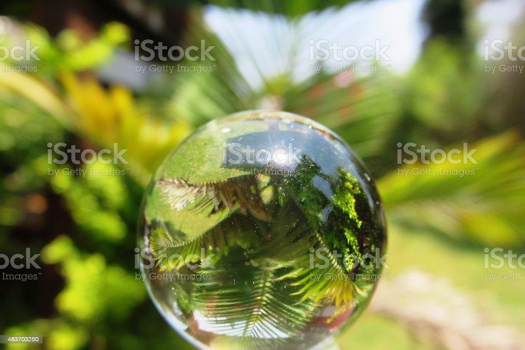 Transparent crystal ball stock photo