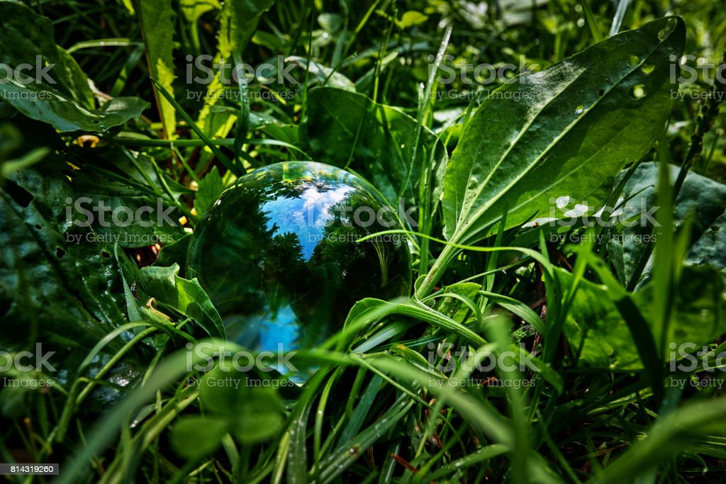 transparent sphere in the grass stock photo