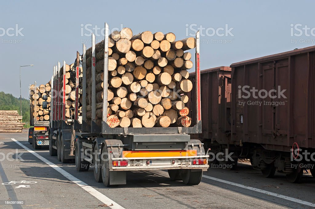Transport of timber to saw mill stock photo
