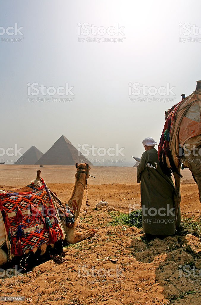 Transport to The Great Pyramids royalty-free stock photo