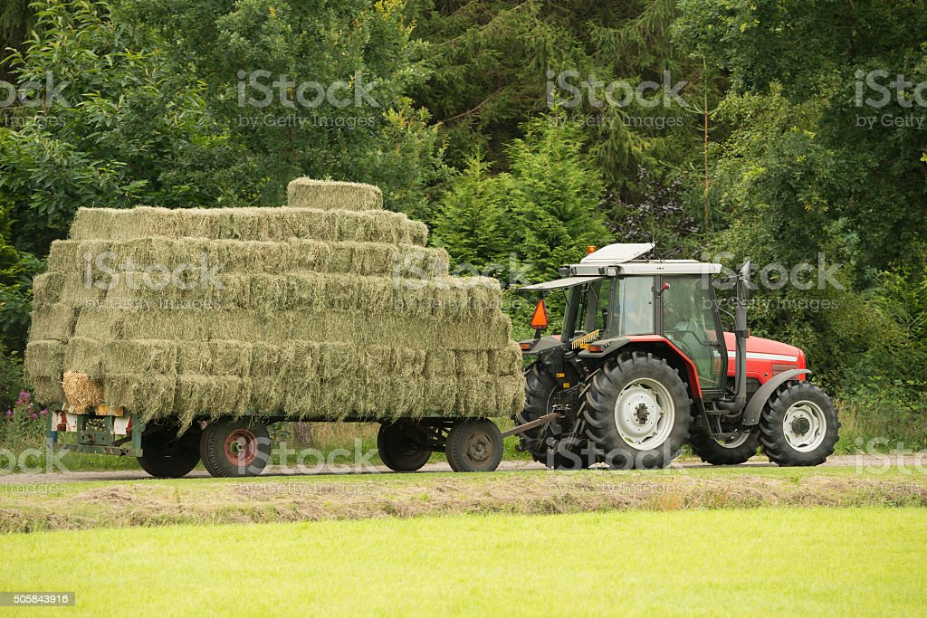 Transportation of bales of hay. stock photo