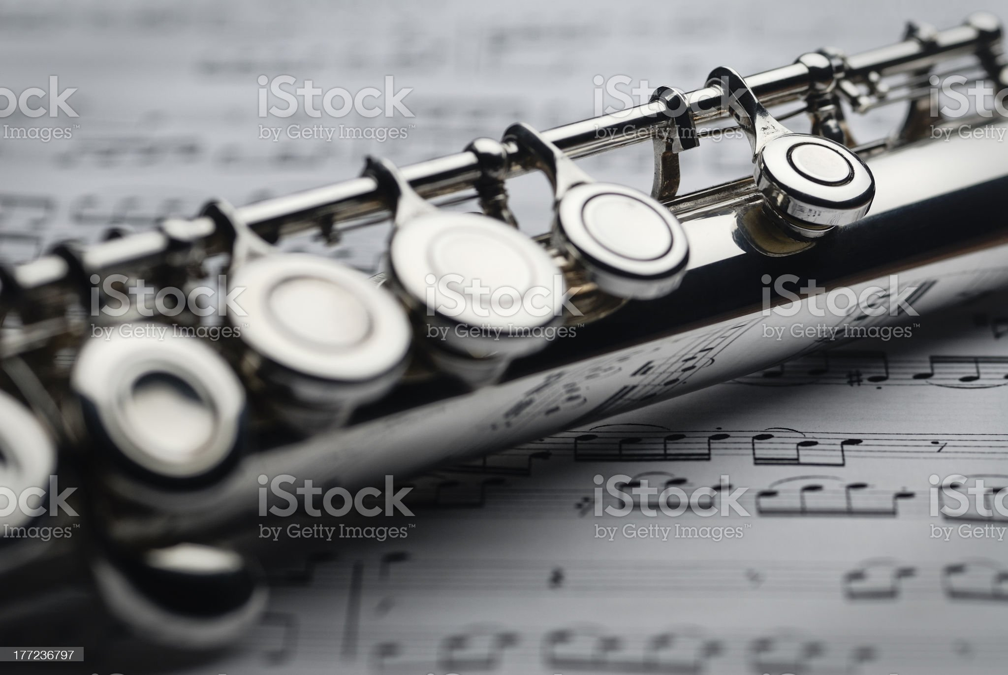 Transverse Flute royalty-free stock photo