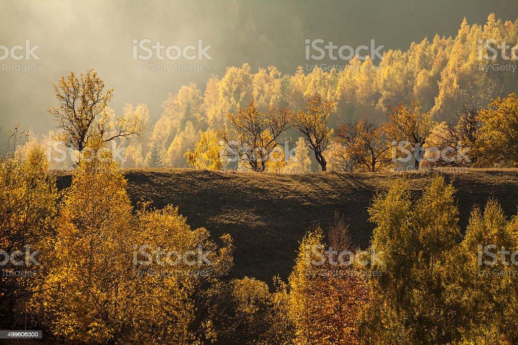 Transylvanian Fall stock photo