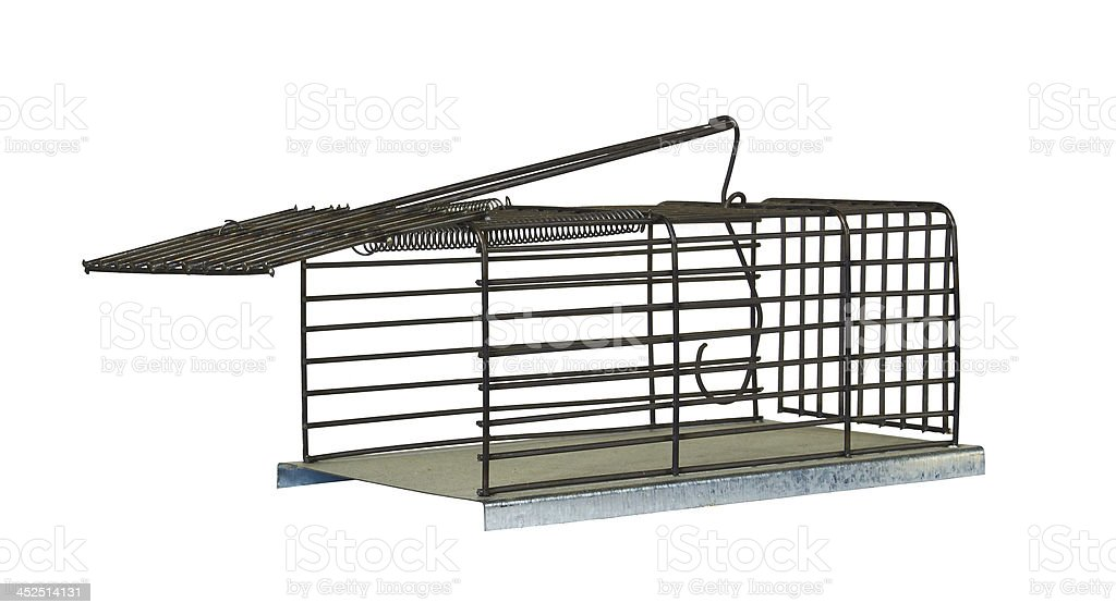 trap for rats royalty-free stock photo