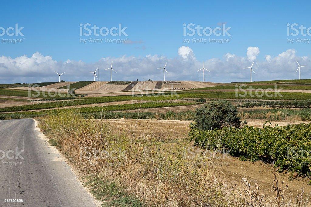 Trapani countryside, wind power on vineyard area stock photo
