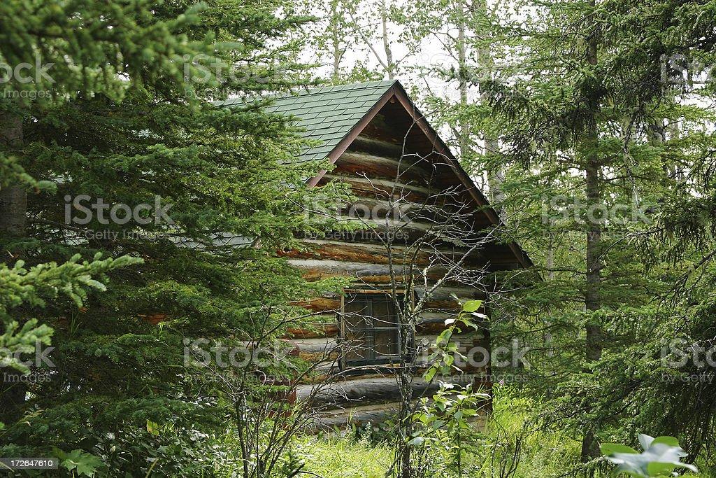 Trapper John's Cabin royalty-free stock photo
