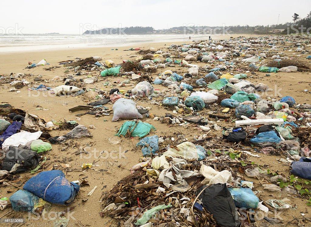 Trashed beach stock photo