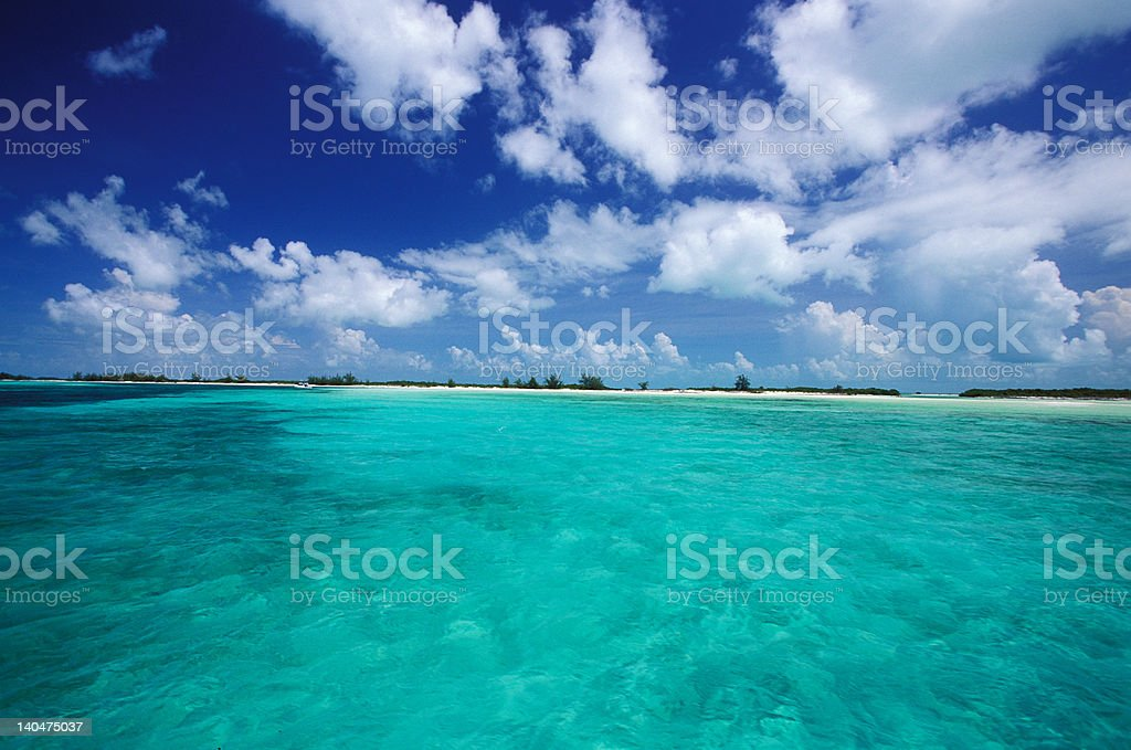 trasparency water in Cuba lagoon royalty-free stock photo
