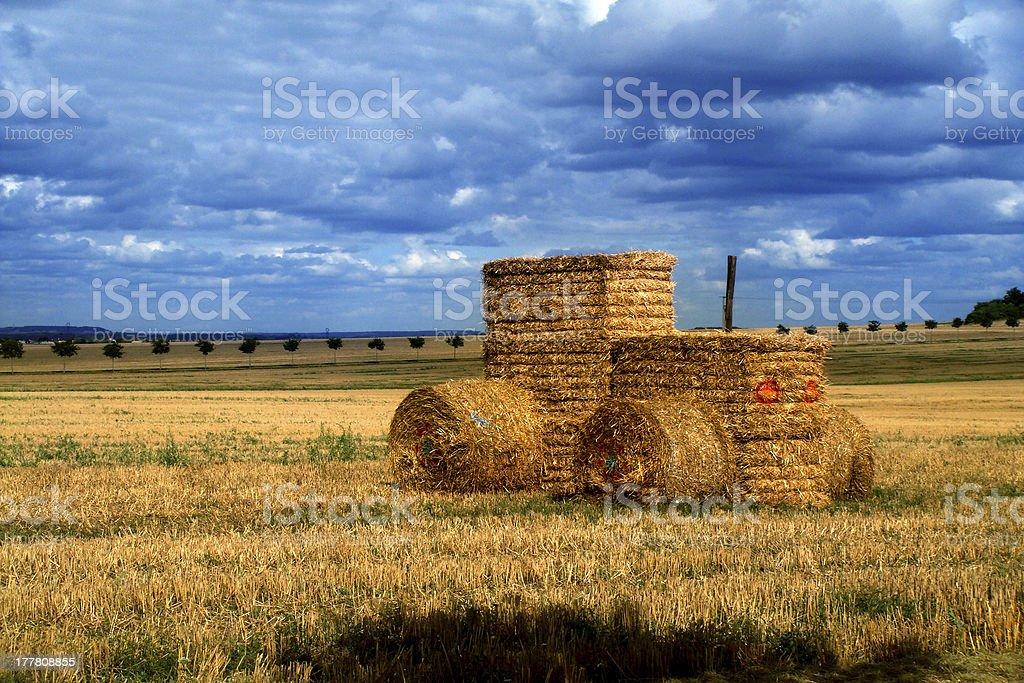 trattore stock photo