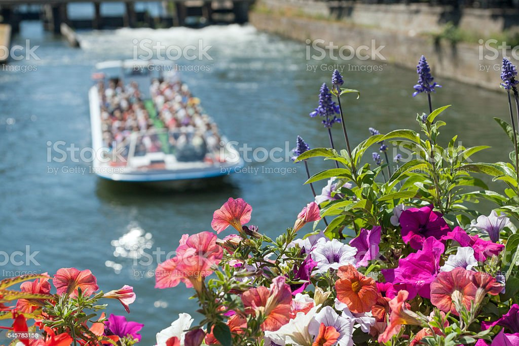 Travel background Strasbourg: Flowers with tourist boat on the river stock photo