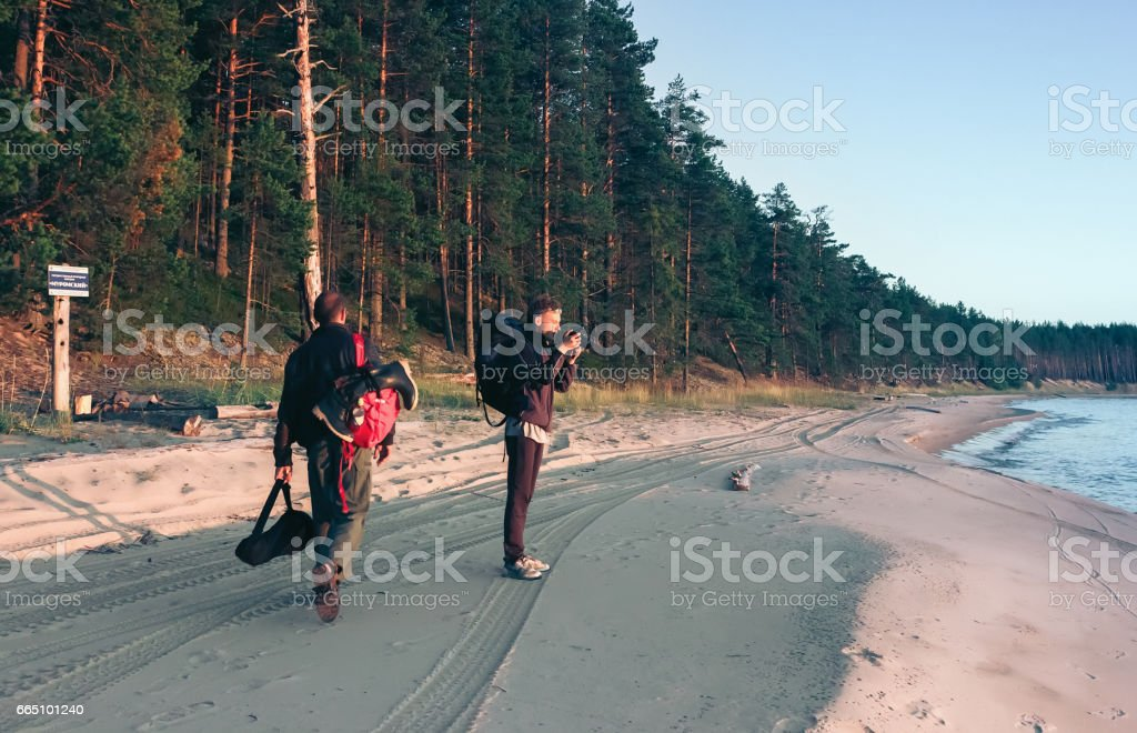 Travel On The Coast Along Coniferous Forest stock photo