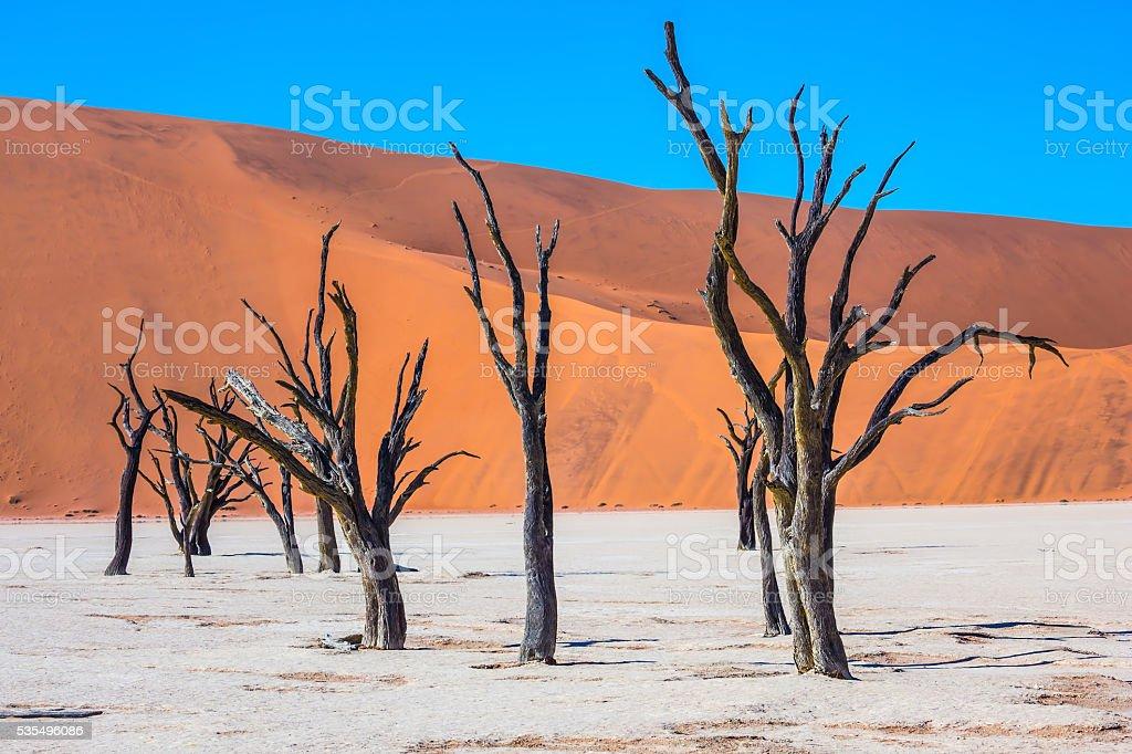 Travel to Namibia stock photo