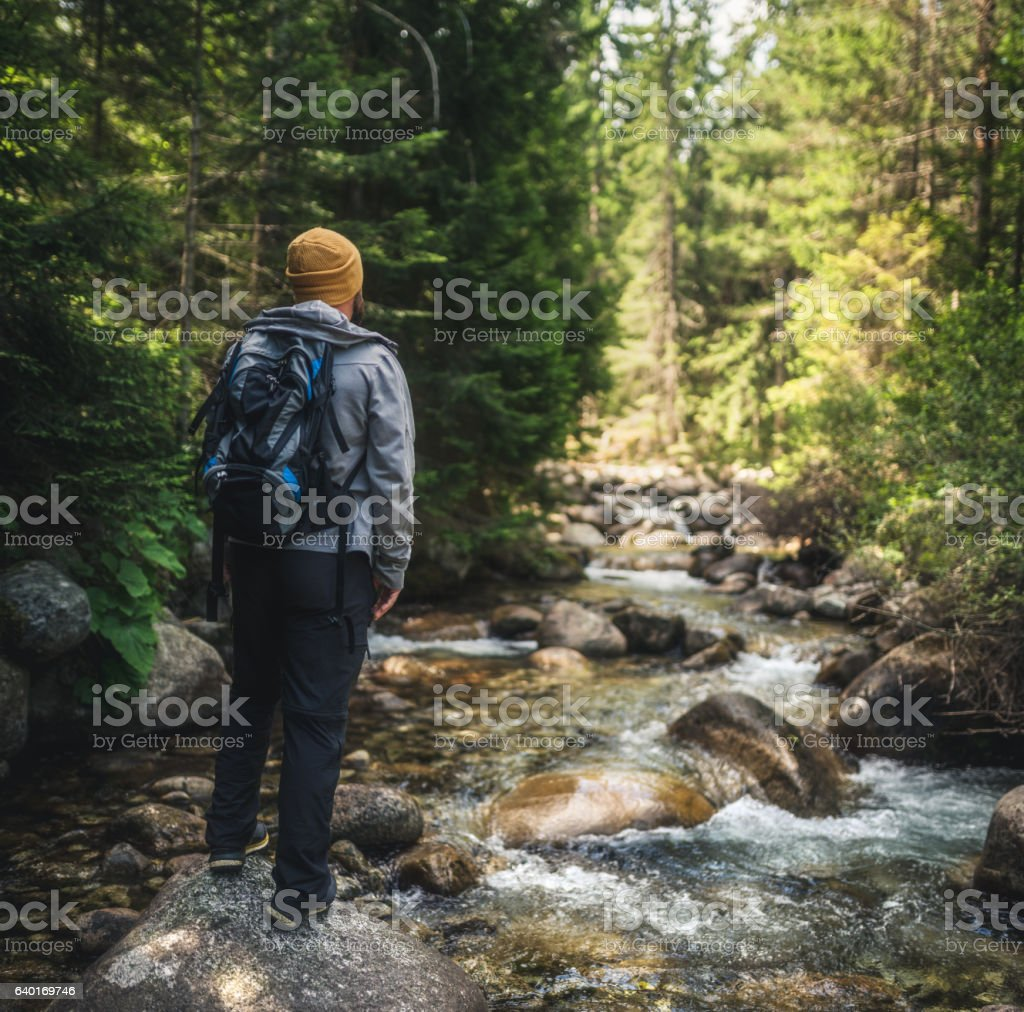 Traveler at the stream in mountain forest stock photo