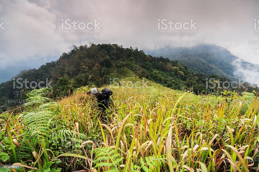 traveler backpacker walk along on a trail on the ridge. stock photo