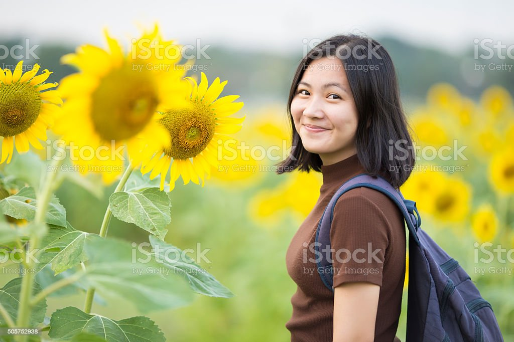 Traveler Girl at Sunflower Field stock photo