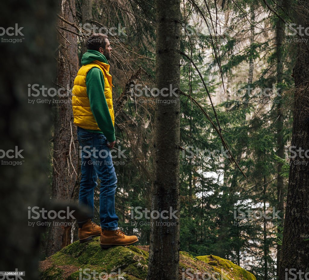 Traveler standing on a huge rock in the woods stock photo