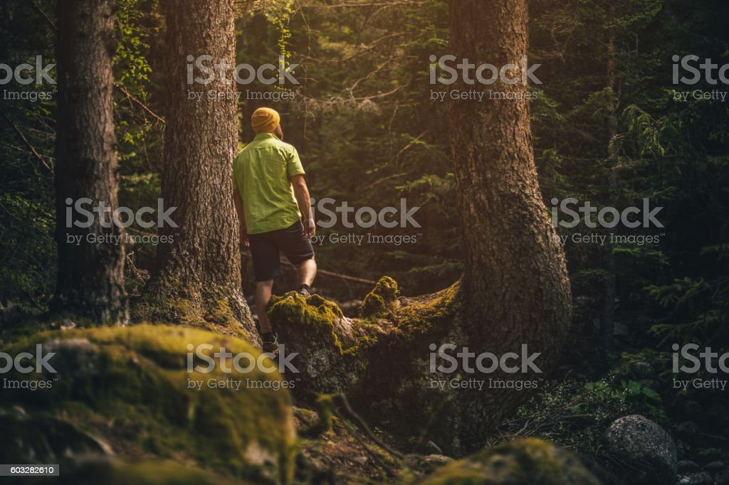 Traveler stands alone in forest and looking around stock photo