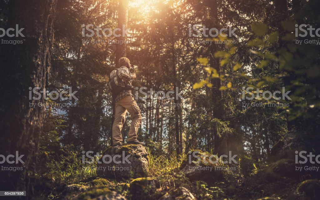 Traveler walking alone in the forest at sunset stock photo
