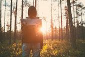Traveler walking in forest at sunset