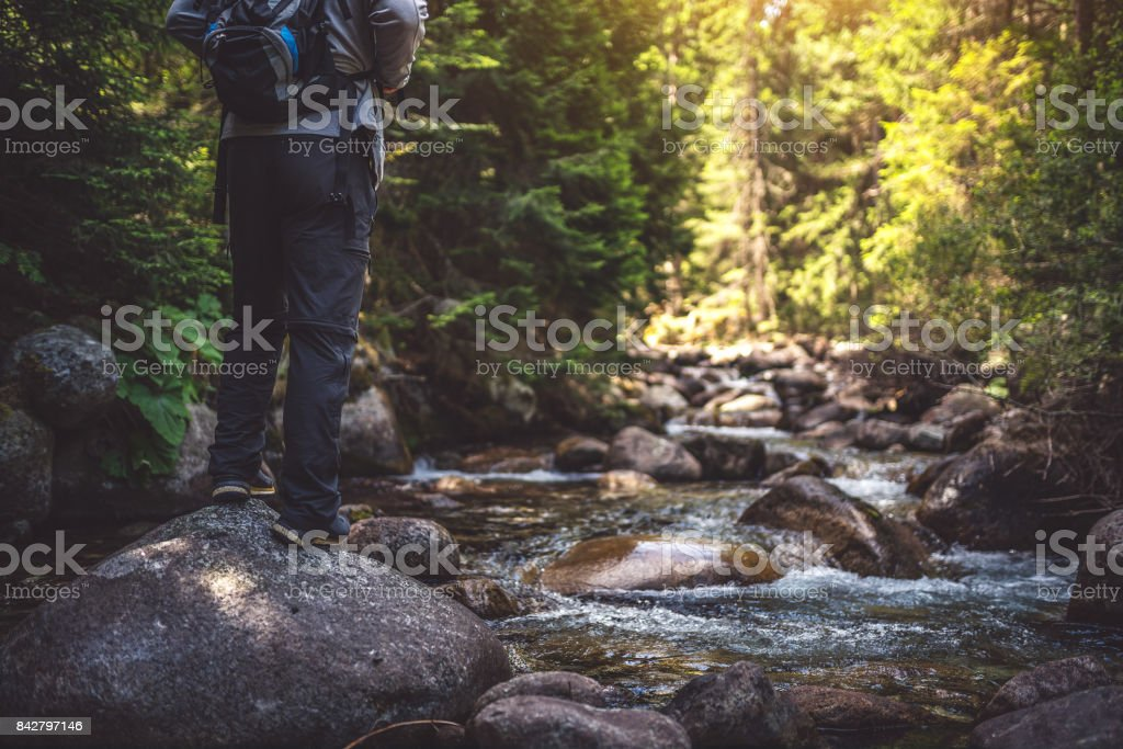 Traveler with a backpack walks in the the forest stock photo